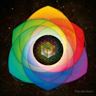 Tableau vibratoire multicolore