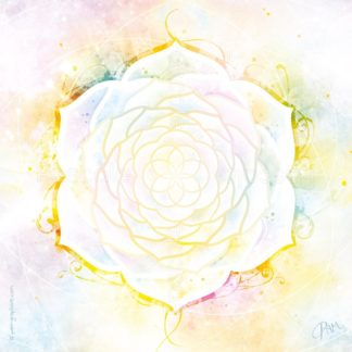 Dessin vibratoire blanc