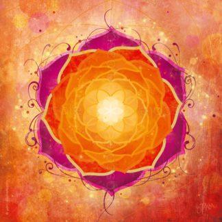 Dessin vibratoire orange et rose