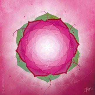 Dessin vibratoire rose et vert