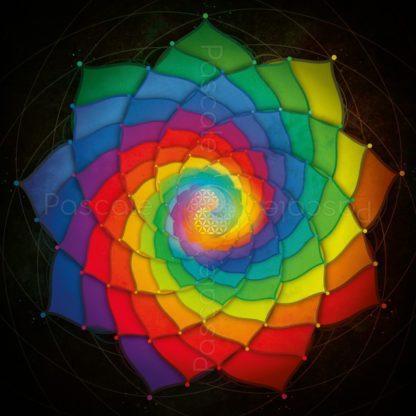 Dessin vibratoire, spirales multicolores et fleur de vie