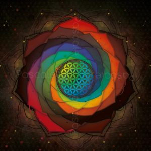 Mandala d'ancrage, fleur de vie et spirales de Fibonacci